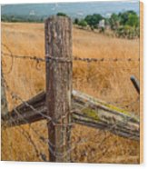 Fence Posts Wood Print