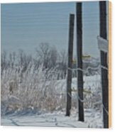 Fence Posts In Ice Wood Print