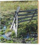 Fence Wood Print