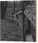 Fence To Nowhere Wood Print