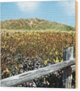 Fence With A View Wood Print