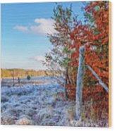 Fenced Autumn Wood Print