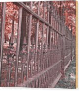 Fenced In Red Wood Print