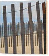 Fenced Off Beach Wood Print