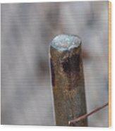Fencehook  Wood Print