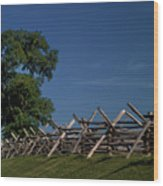 Fenceline At Bloody Lane Wood Print by Judi Quelland