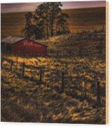 Fencelines Wood Print