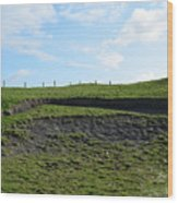 Fencing Along A Field Above The Cliff's Of Moher Wood Print