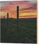 Fencline Sunset Wood Print
