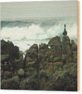 Feng Shui On The Monterey Peninsula Wood Print