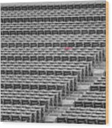 Fenway Park Red Chair Number 21 Bw Wood Print