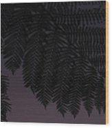 Fern At Dusk Wood Print