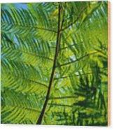 Fern Detail Wood Print