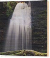 Fern Falls, Id Wood Print