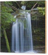 Fern Falls Wood Print