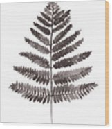 Fern Leaf Watercolor Art Print Wood Print