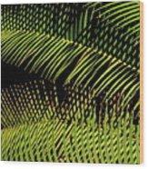 Fern-palm Abtract Wood Print