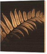 Fern Zen Wood Print