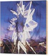 Ferris Wheel At Dusk-2 Wood Print