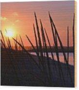 Ferry Beach Wood Print