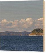 Ferry To Martha's Vineyard Passes Nobska Light Wood Print