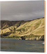 Ferry View Picton New Zealand Wood Print