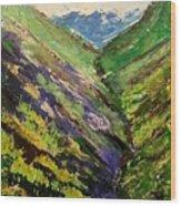 Fertile Valley Wood Print