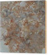Festering   No01 Wood Print