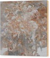Festering  N003 Wood Print