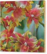 Festive Orchids Wood Print