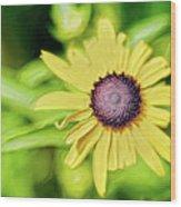 Fibonacci In The Light Wood Print