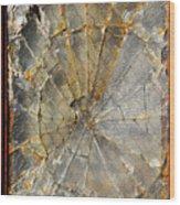 Fibonaccis Muse Wood Print
