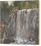 Fictitious Falls Wood Print