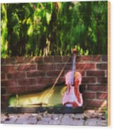 Fiddle On The Garden Wall Wood Print