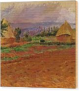 Field And Haystacks 1885 Wood Print