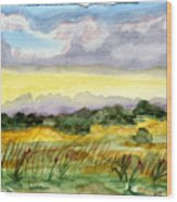 Field And Sky 2 Wood Print