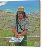 Field Archeologist Ranger In Quarry In Dinosaur National Monument, Utah  Wood Print