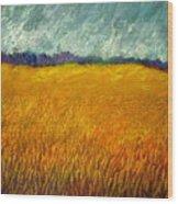 Field At Noon Wood Print