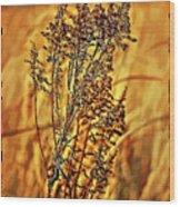 Field Frolic Wood Print