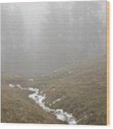 Field Near Elberton Wood Print