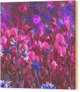 Field Of Dreams Abstract Wood Print