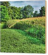 Field Of Dreams Iv Wood Print