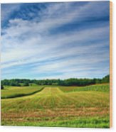 Field Of Dreams Two Wood Print by Steven Ainsworth