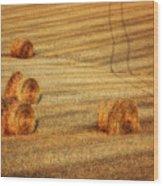 Field Of Gold #3 Wood Print