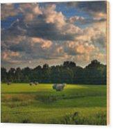 Field Of Grace Wood Print by T Lowry Wilson