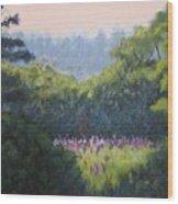 Field Of Lupines Deer Island Wood Print