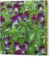 Field Of Pansy's Wood Print