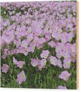 Field Of Primrose Wood Print
