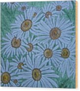 Field Of Wild Daisies Wood Print by Kathy Marrs Chandler