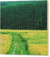 Field Of Yellow Wood Print